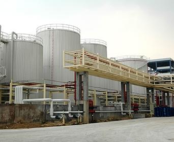 100T/D特种油精炼、氢化